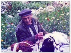 Manolis With His Animals - Above Langada